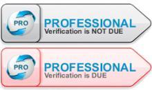 Professional Verification Flags