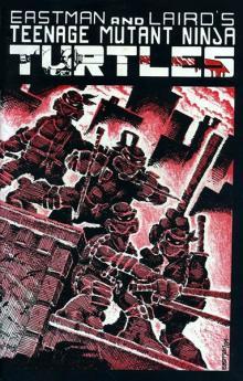 Teenage Mutant Ninja Turtles #1 (1984)