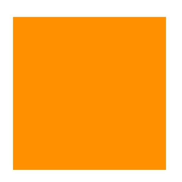 wca2018_orangecircle.png